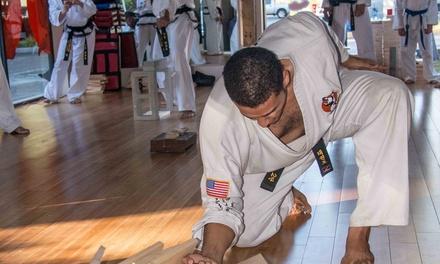 Martial Arts Classes in Palm Harbor, FL (267451)
