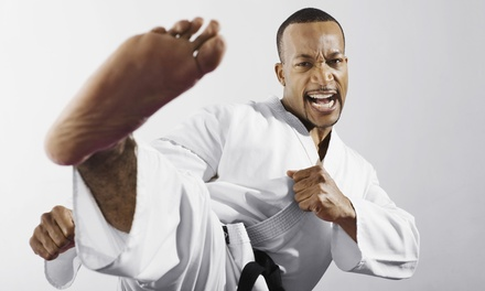 Martial Arts Classes in New Milford, CT (422443)