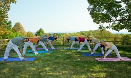 Catskills Yoga Retreat In Woodbourne Ny For Sivananda Ashram Yoga Ranch 426481