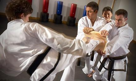 Tae Kwon Do Classes in Smyrna, DE (530316)