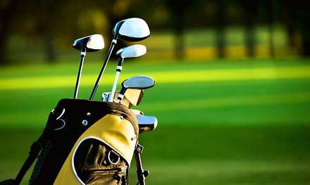 Golf Club Fitting Services in Boise, ID (564650)