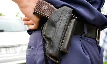 Pistol Concealed-Carry Class in Mankato, MN (951043)