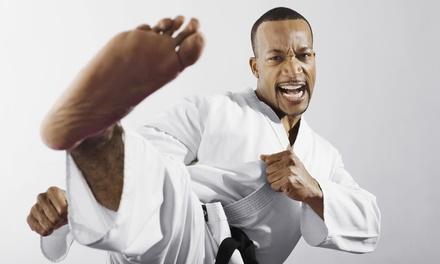 Martial Arts in Tucker, GA (990969)
