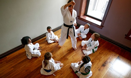 Martial Arts Classes in Reston, VA (1257673)