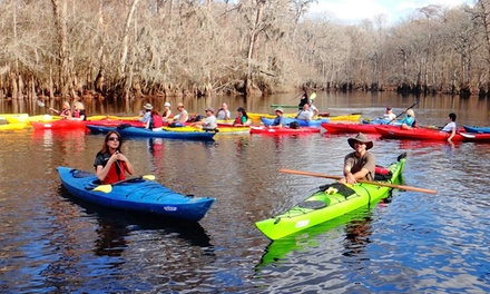 Kayak or Paddleboard Tour in Bluffton, SC (1495188)