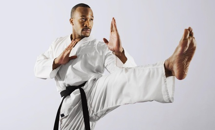 Martial Arts / Karate / MMA in Spring Hill, FL (1623912)