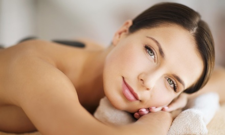 Beauty Packages in Palm Harbor, FL (1813249)