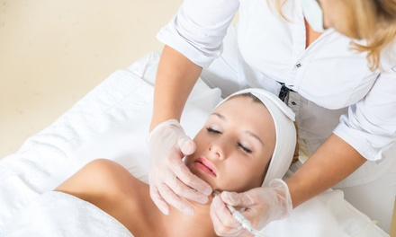 Dermaplaning Sessions in Palm Harbor, FL (1946056)
