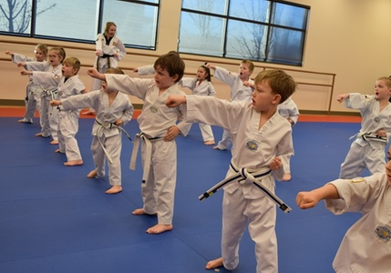 Martial Arts / Karate / MMA in Boise, ID (2289667)