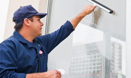 Window Cleaning Services in Spring Hill, FL (2294668)