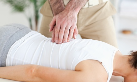 Chiropractic Adjustment Package in Boise, ID (2446772)