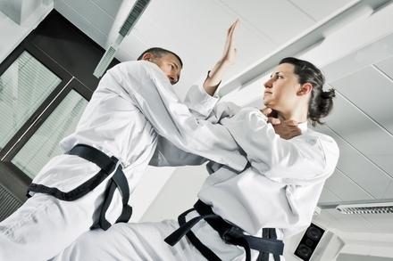 Martial Arts / Karate / MMA in Lawton, OK (2434197)
