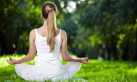 Outdoor Yoga Classes in Platte City, MO (2449357)