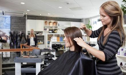 Hair Styling in Largo, FL (2506283)