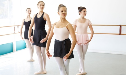 Dance Lessons in Palm Harbor, FL (2558919)