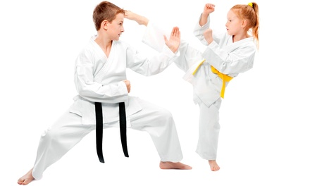 Tae Kwon Do for the Whole Family in Mankato, MN (2607521)