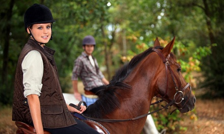 Horseback-Riding Lessons in Portland, CT (2675518)