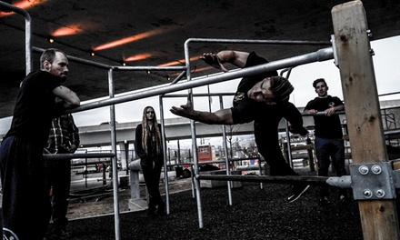 Parkour in Boise, ID (2742321)