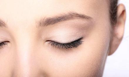 Eyelash Extensions in Largo, FL (2793045)