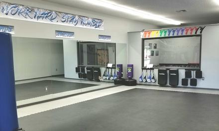 Martial Arts Classes in Palm Harbor, FL (2780337)