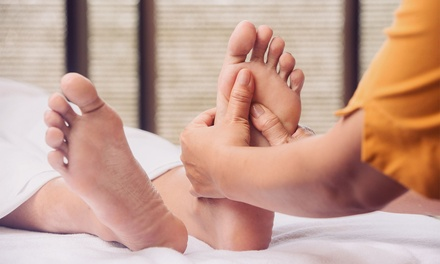 Foot Reflexology in Palm Harbor, FL (3047826)