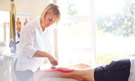 Sports Massage in Palm Harbor, FL (3189287)
