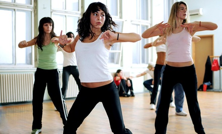 Zumba in Palm Harbor, FL (3215480)