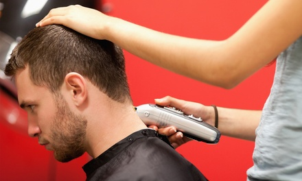 Men's or Kids Haircut in Palm Harbor, FL (3279039)