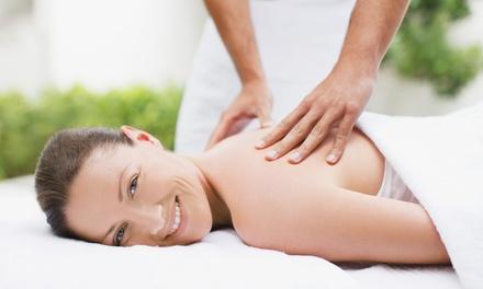 Massage or Custom Facial in Wayzata, MN (3277945)