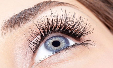 Full Set of Eyelash Extensions in Palm Harbor, FL (3337327)