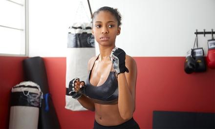 Martial Arts Classes in Palm Harbor, FL (3364495)