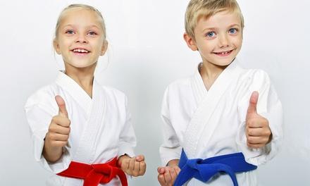 Kids' Martial-Arts Classes in Hockessin, DE (3552102)