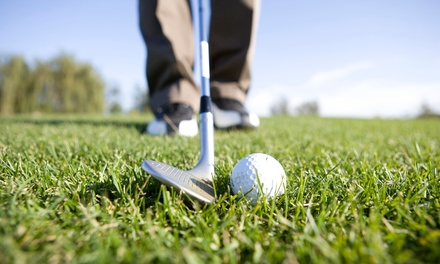 Round of Golf with Cart and Beer in Winnemucca, NV (3965015)