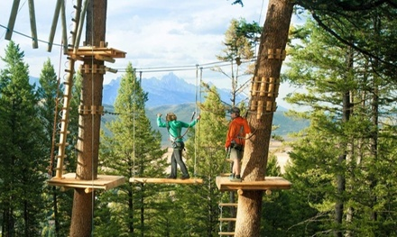 Slides, Coaster Rides or Zipline in Jackson, WY (4099161)