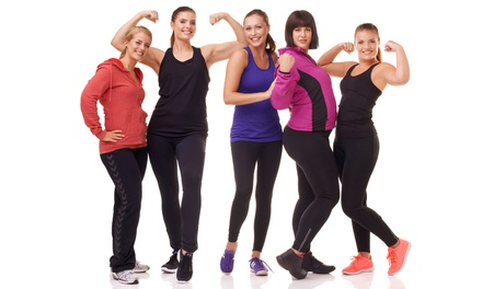 Fitness Boot Camp for Women in Palm Harbor, FL (4088189)