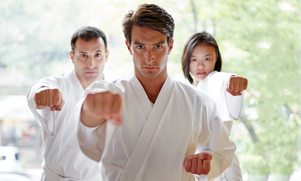 Martial-Arts Class Package in New Milford, CT (4185837)