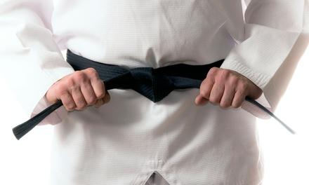 Martial Arts Classes in Weston, FL (4190156)