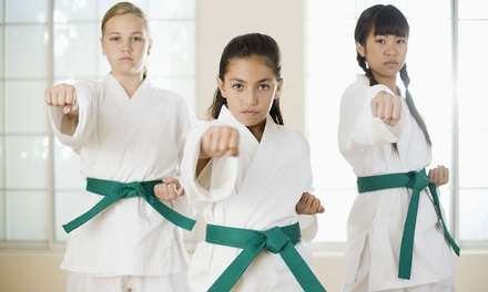 Martial Arts Classes in Port Chester, NY (4218845)