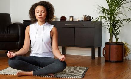 Online Meditation Session in Palm Harbor, FL (4497936)